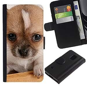 Stuss Case / Funda Carcasa PU de Cuero - Small Mutt Puppy Eyes Cute Dog - Samsung Galaxy S5 V SM-G900