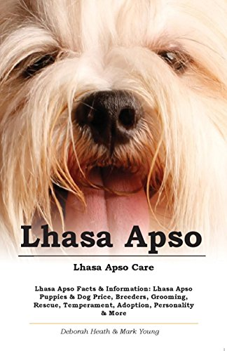 Lhasa Apso. Lhasa Apso Care. Lhasa Apso Facts & Information: Lhasa Apso Puppies & Dog Price, Breeders, Grooming, Rescue, Temperament, Adoption, Personality & More