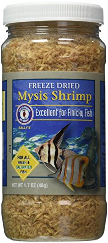 Mysis Shrimp - San Francisco Bay Brand ASF71720 Freeze Dried Mysis Shrimp for Fresh and Saltwater Fish, 48gm