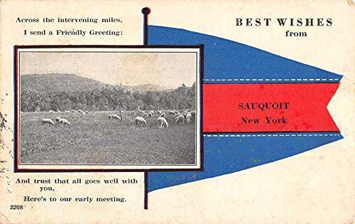 Sauquoit New York Sheep Pasture Pennant Flag Antique Postcard K106170
