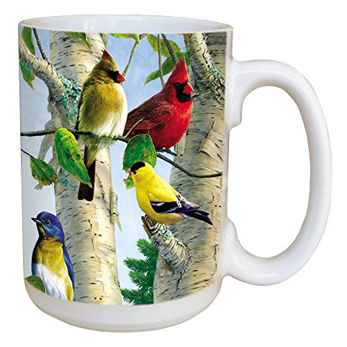 Tree-Free Greetings LM45507 Favorite Songbirds 15 Ounce Ceramic Coffee Mug with Full Sized Handle, 15