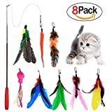 Best Toy With Feathers - Cat Wand Feather Toys Retractable Interactive Cat Tease Review
