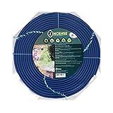 Evergreen Spring Citronella Spiral Incense and Bug Deterrant, Set of 3