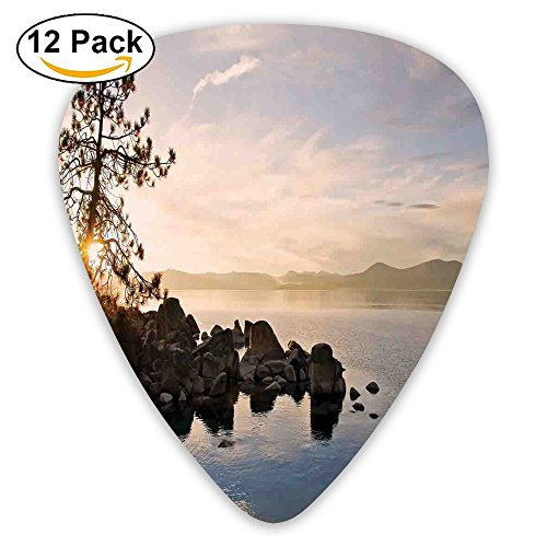 At Sunset With Clear Sky And Single Pine Tree 12 Pack Colorful,Stylish, Premium Quality | Perfect Guitar Picks For Kids & Teens ()