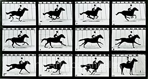 Eadweard Muybridge Photo, Motion Study, horse with rider, 1880s