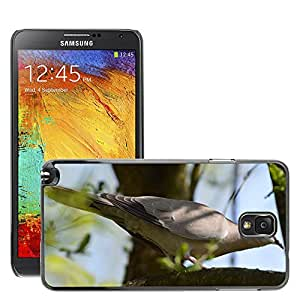 Hot Style Cell Phone PC Hard Case Cover // M00309095 Dove Grey Tree Wildlife Photography // Samsung Galaxy Note 3 III N9000 N9002 N9005