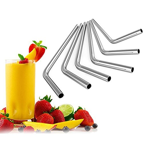 iRainy Stainless Steel Drinking Straws, Set of 6 with Cleani