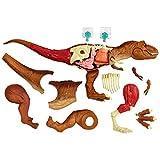 Jurassic World Stem Tyrannosaurus Rex Anatomy Kit