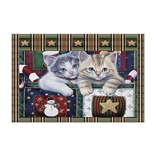 Christmas Cat Doormat, Pet Kitten at Vintage Scottish Tartan Plaid Style with New Year Snowman and Star Bath Rugs, Flannel Non-Slip Floor Indoor Entrance Mat Rug 15.7x23.6in Home Accessories