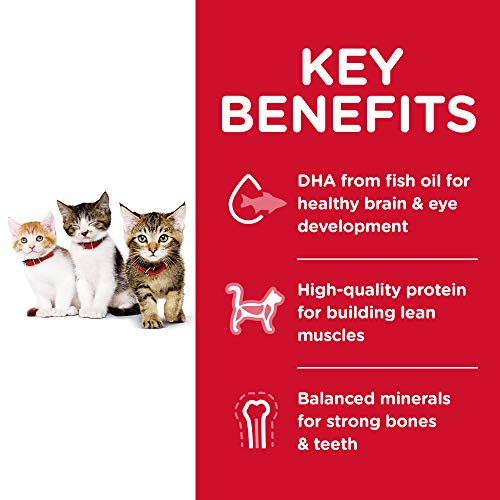 Hill's Science Diet Dry Cat Food, Kitten, Chicken Recipe 5