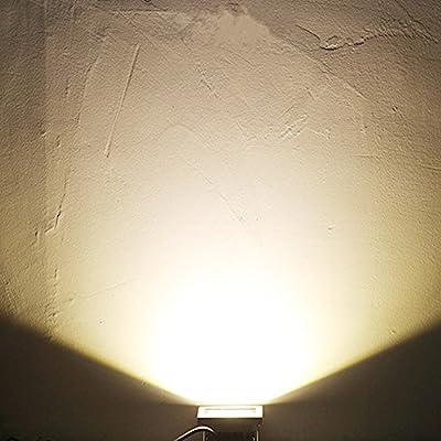 LED Motion Floodlight
