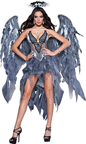 Gothic Angel Halloween Costume (InCharacter Costumes Women's Dark Angel's Desire Costume, Grey/Silver,)