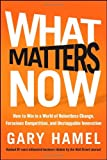 img - for What Matters Now: How to Win in a World of Relentless Change, Ferocious Competition, and Unstoppable Innovation by Gary Hamel (20-Feb-2012) Hardcover book / textbook / text book