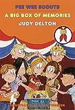 A Big Box of Memories, Judy Delton, 0440415284