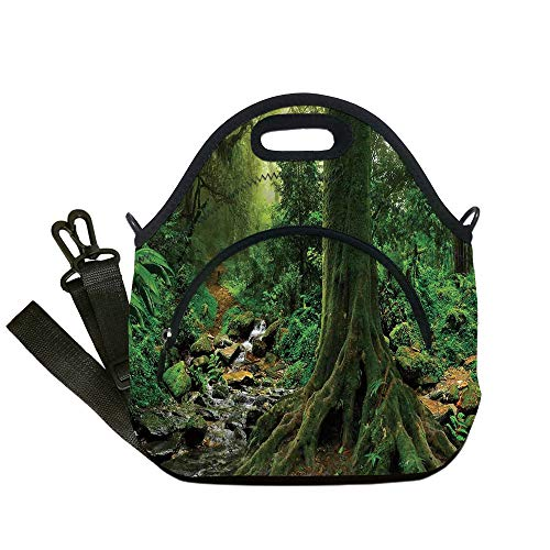 Insulated Lunch Bag,Neoprene Lunch Tote Bags,Apartment Decor,Rain Forest Scene with River in North Forest in Early Morning Humid Fog Print,Green,for Adults and children