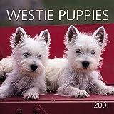 Westie Puppies 2001 Calendar