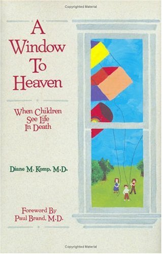 Cover of A Window to Heaven: When Children See Life in Death