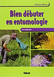 Bien débuter en entomologie : Les insectes