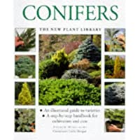 Conifers (The new plant library)