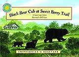 Black Bear Cub at Sweet Berry Trail, Laura Gates Galvin, 1592497748