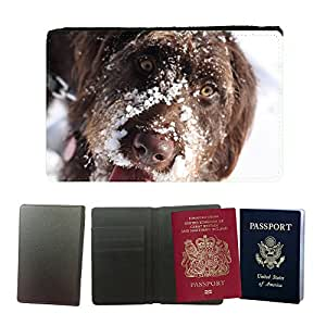 Super Stella PU Leather Travel Passport Wallet Case Cover // M00144874 Dog Pet Animal Snow Cute Canine // Universal passport leather cover