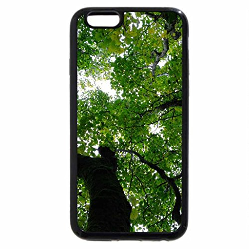 iPhone 6S Case, iPhone 6 Case (Black & White) - Most Beautiful Tree