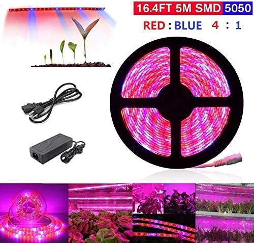 16.4ft 5M Waterproof Plant Grow Light,LED Strip Light 5050 SMD Plant Strip Lights Indoor Growing Lamp Flexible Soft Rope Light with 12V Adapter for Greenhouse Hydroponics Flower Seeds Red Blue 4 1