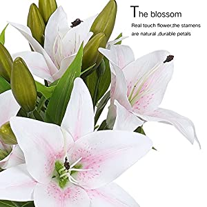 RERXN Artificial Tiger Lily Latex Real Touch Flower Home Wedding Party Decor,Pack of 5 (White with red Heart) Product ID: 653892503564 3