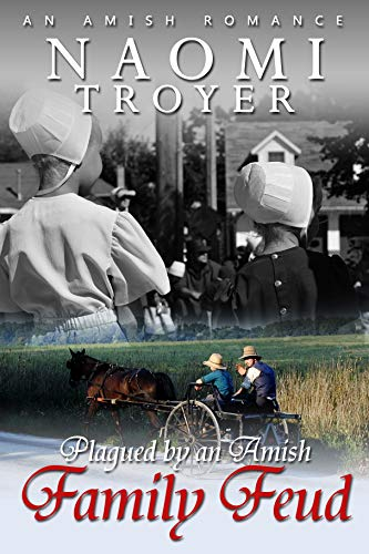 Plagued by an Amish Family Feud by [Troyer, Naomi]