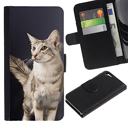 OMEGA Case / Apple Iphone 5 / 5S / oriental longhair cat British American / Cuir PU Portefeuille Coverture Shell Armure Coque Coq Cas Etui Housse Case Cover Wallet Credit Card