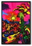(24x36) Lost Horizon (Landscape) Flocked Blacklight Poster Print