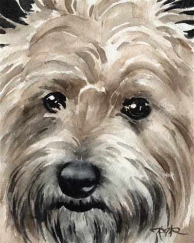 Cairn Terrier Art Print by Watercolor Artist DJ Rogers