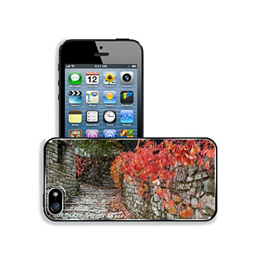 luxlady-premium-apple-iphone-5-iphone-5s-aluminium-snap-case-road-with-red-leaves-in-a-traditional-v