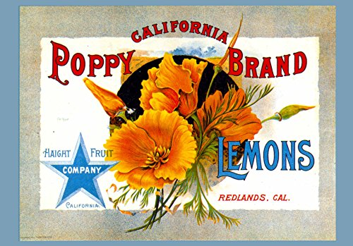 A SLICE IN TIME Redlands San Bernardino County California Poppy Brand Flowers Lemon Citrus Fruit Crate Box Label Art Print ()