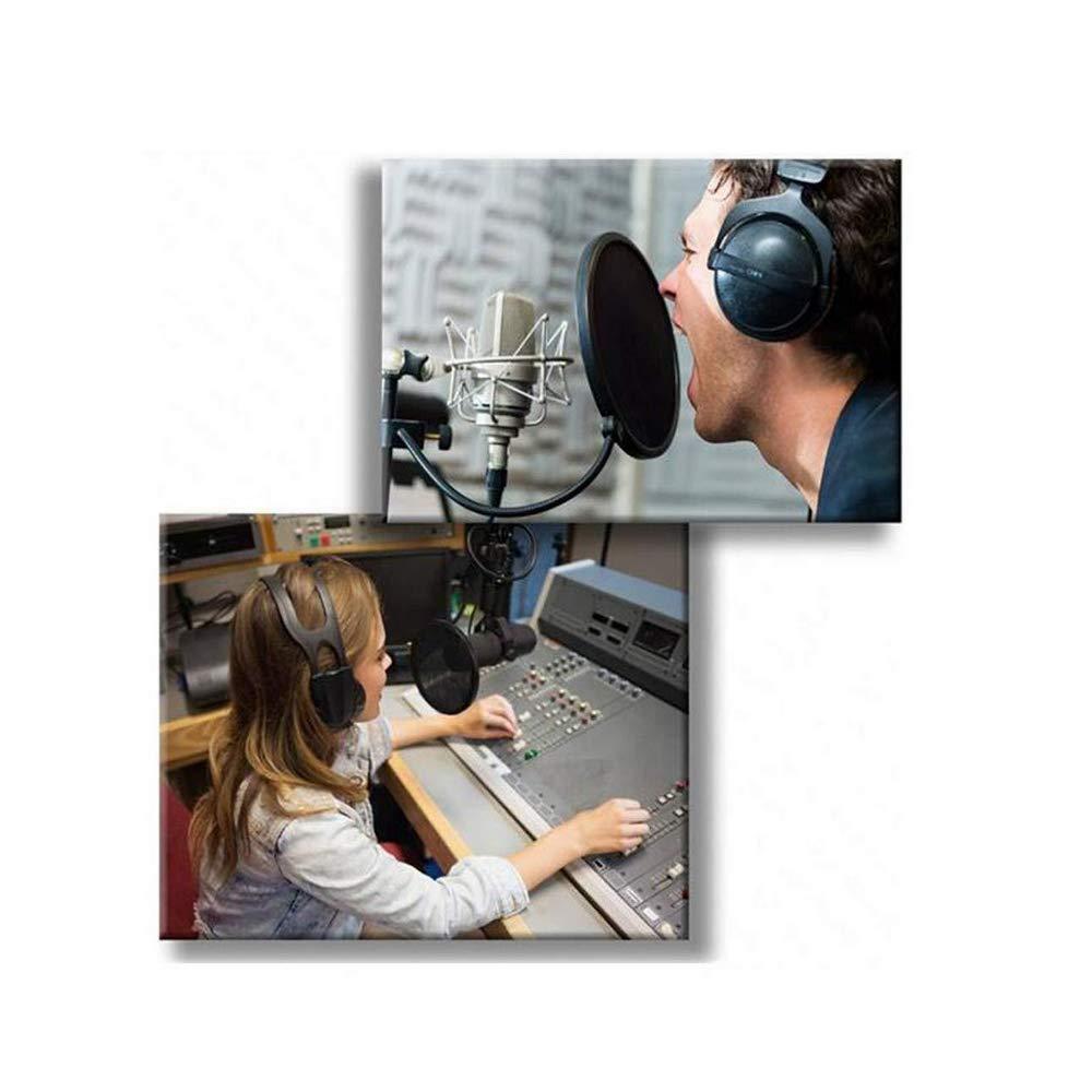 Docooler Microphone Filter Mic Ppo Shield Mask Dual Layer Singing Windscreen Professional Mic Studio
