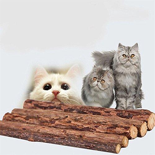 Best Wal Mart Cat Foods