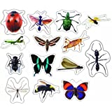 Carson Dellosa Insects: Photographic Shape Stickers (168014)