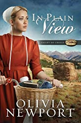 In Plain View (Valley of Choice Book 2)