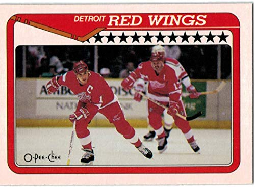 7c4a529b9 Amazon.com  1990-91 O-Pee-Chee Detroit Red Wings Team Set with Steve  Yzerman   Tim Cheveldae RC - 22 NHL Cards  Collectibles   Fine Art