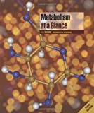 img - for Metabolism at a Glance by J. G. Salway (2004-01-16) book / textbook / text book