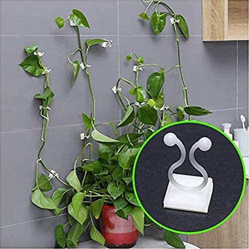 Surenhap 50 Stück Pflanzenclips Kletterhilfen Pflanzenbefestigungsclips Garden Vines Sticky Clips Fester Halter