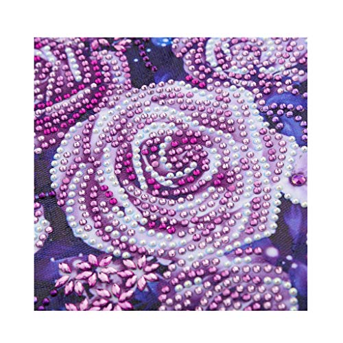 Digood DIY Diamond Painting, 5D Partial Drill Special Shaped Cross Stitch Painting Embroidery Wall Art ()