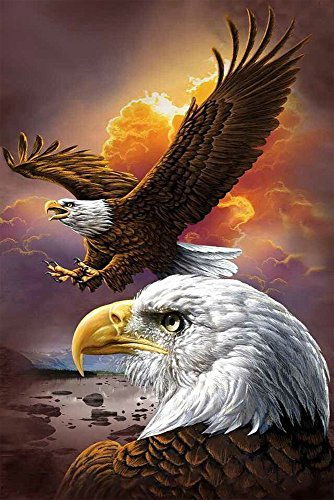 Faraway Soaring Eagle 5D Diy Full Round Diamond Painting Mosaics Embroidery Rhinestone Painting for Wall Decor 12X16inch (Soaring Eagle Embroidery)