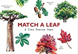 #5: Match a Leaf: A Tree Memory Game