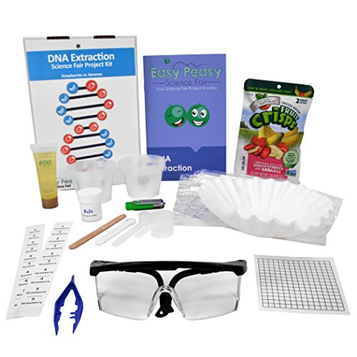 DNA Extraction - Easy Peasy Science Fair Project Kit –Top Science Learning Kit