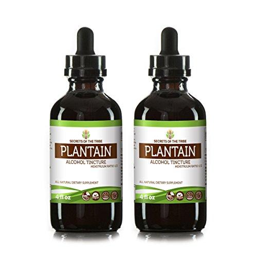 Plantain Tincture Alcohol Liquid Extract, Organic Plantain (Plantago Major) Dried Leaf (2x4 FL oz) -