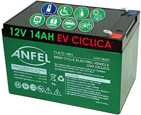 Batteria 12 Volt 14 ah Ricaricabile per Uso CICLICO 6DZM per Bici Elettriche monopattini sollevatori carrozzine Scooter Alta RESA Rinforzata
