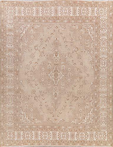 (Vintage Geometric Muted Beige Ivory Distressed Persian Oriental Area Rug 9X12)