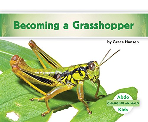 Becoming a Grasshopper (Changing Animals)