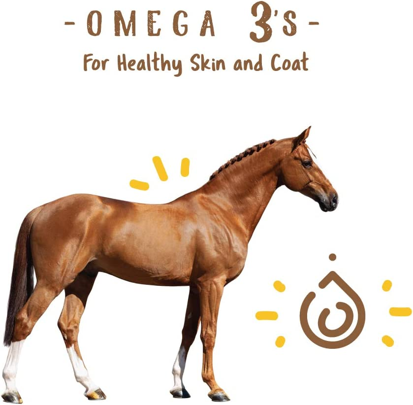 Manna Pro Simply Flax for Horses | Omega-3 Fatty Acids from Flaxseed | 8 Pounds : Horse Nutritional Supplements And Remedies : Pet Supplies